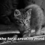the feral creative mind