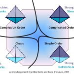 Loose Hierarchies, Strong Networks