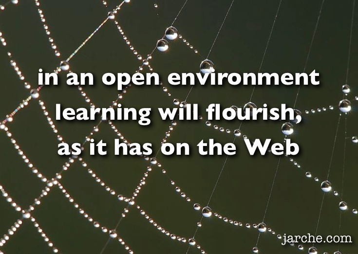Spider Web ('in an open environment learning will flourish, as it has on the Web')