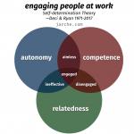 autonomy, competence, relatedness