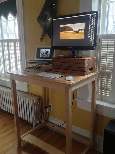 harold jarche standing desk