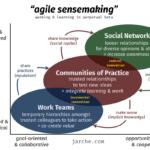 agile sensemaking