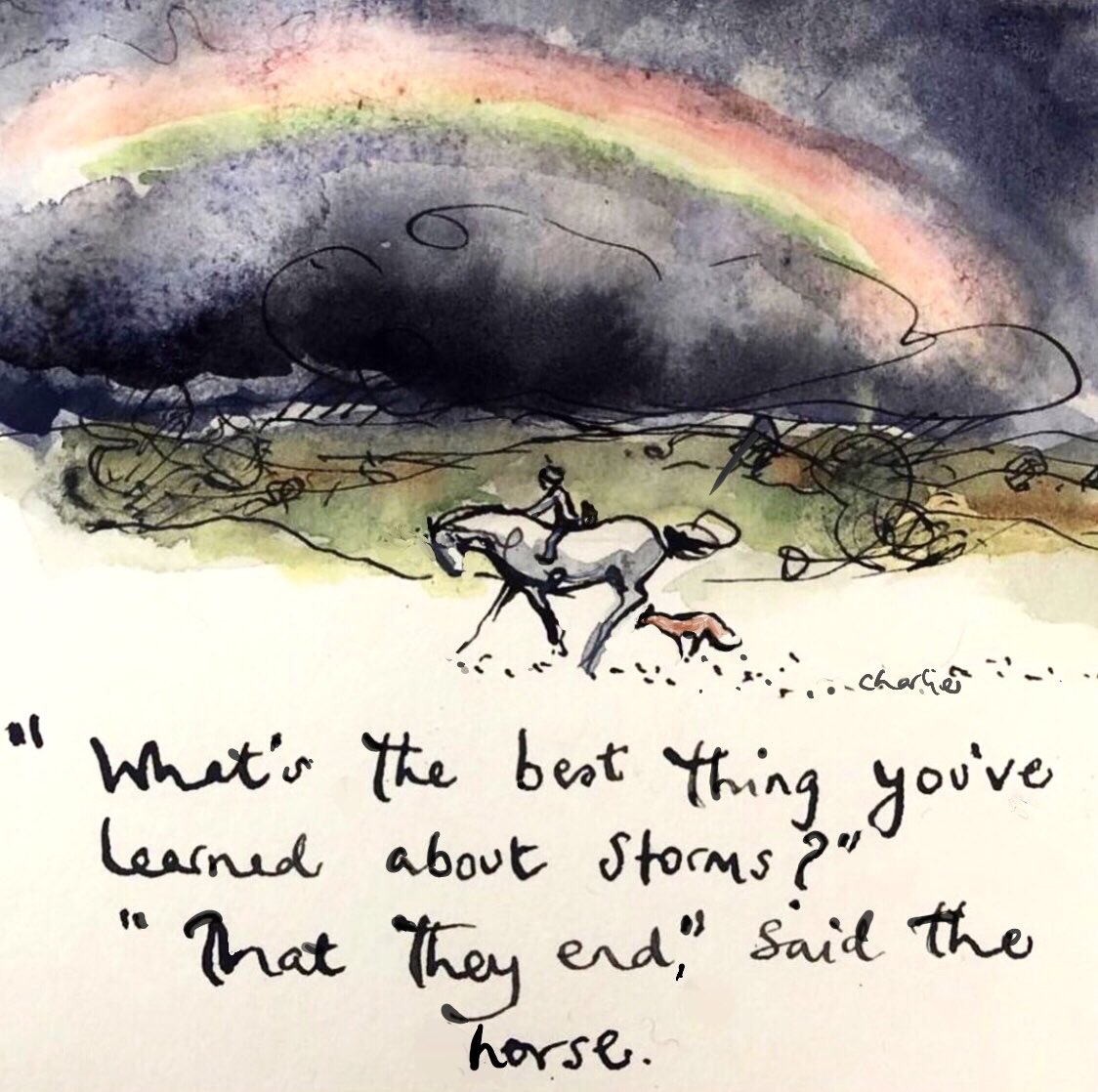 what is the best thing you have learned about storms